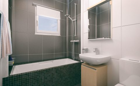 Τρισδιάστατη εικόνα wc